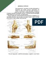 artroza articulației cotului 2-3 grade cu durere în articulațiile brațului antebrațului