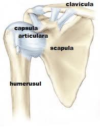 durerea radiază spre articulația umărului drept