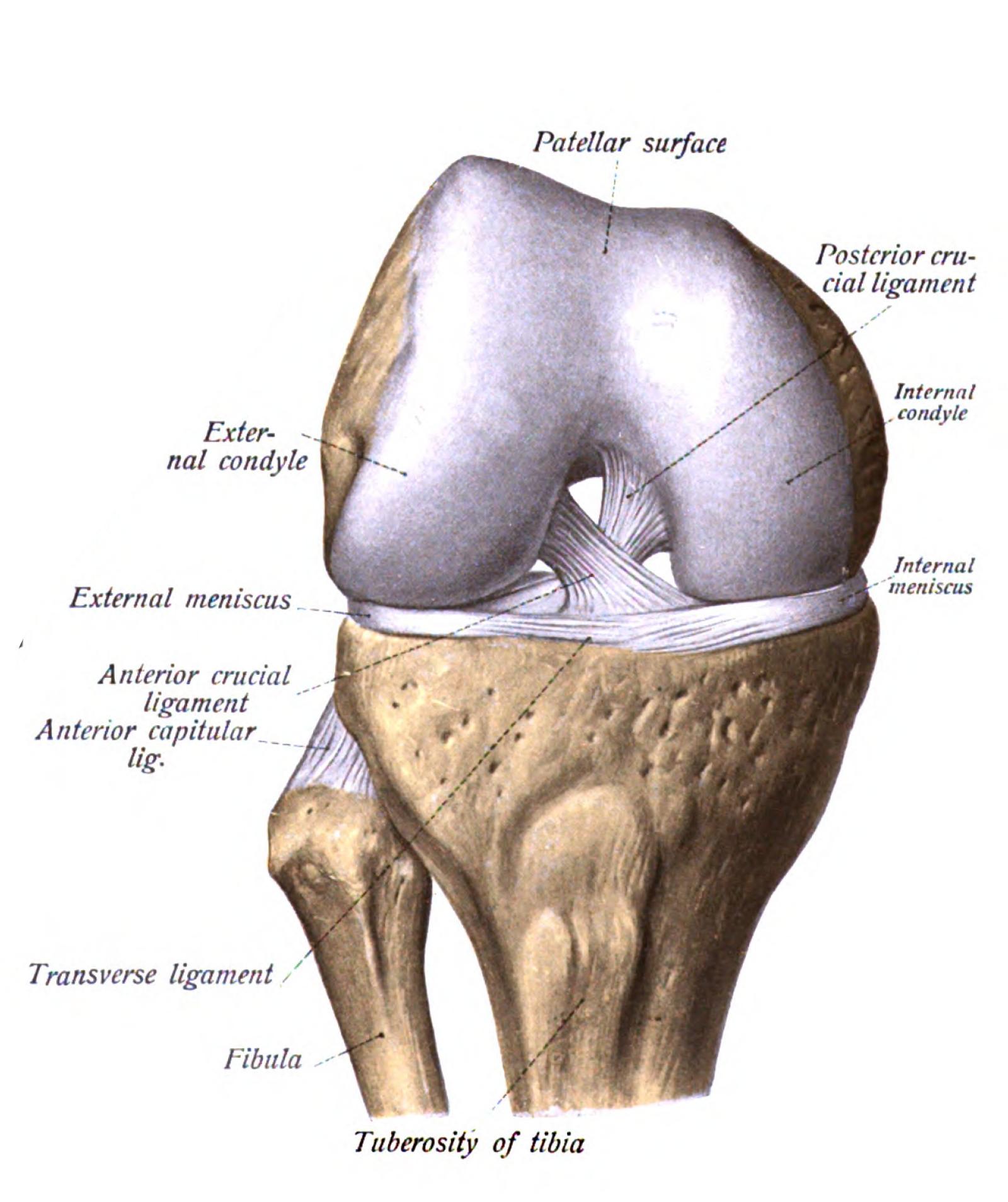 tratament cu artroză radon