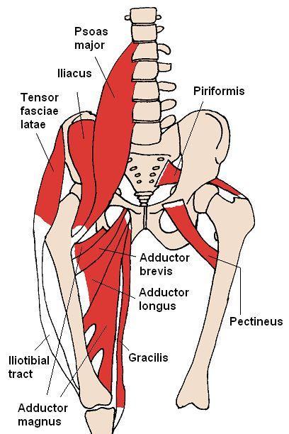 Realizarea masajului articulației șoldului cu coxartroză - Rănire