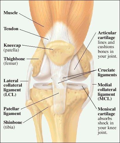 unguent oncologic comun cum să tratezi un mușchi articular al piciorului