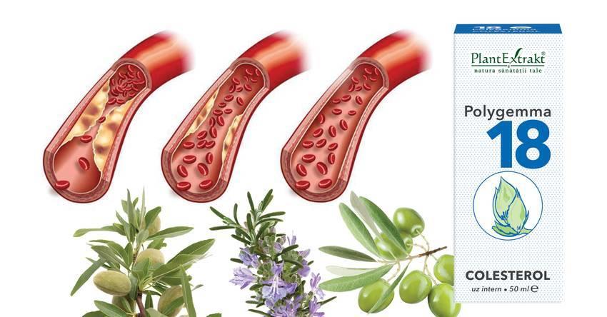 boală articulară și colesterol