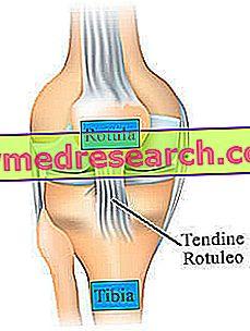 Boala lui Schlatter la genunchi