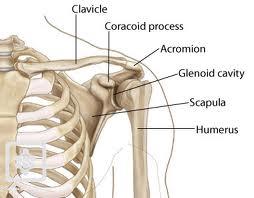 tratamentul fracturilor tuberculoase la umăr