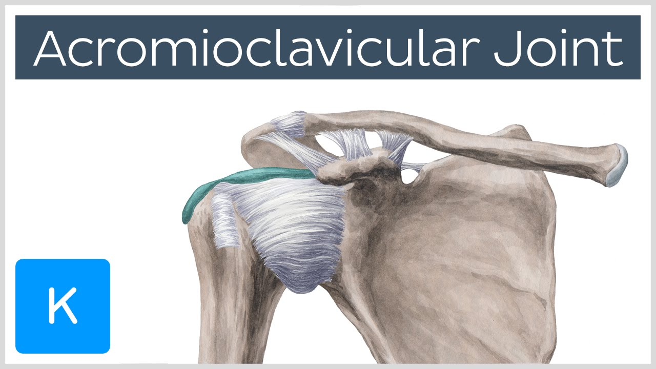 cum să tratezi o articulație falsă a claviculei