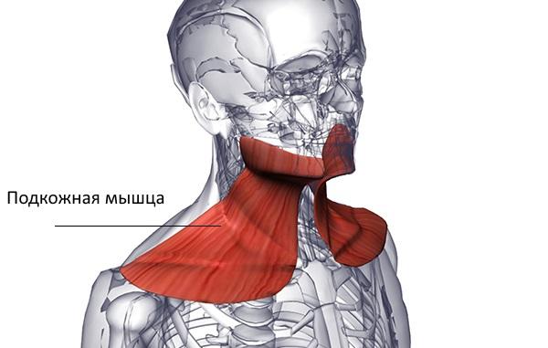 deteriorarea buzei cartilaginoase a articulației umărului drept