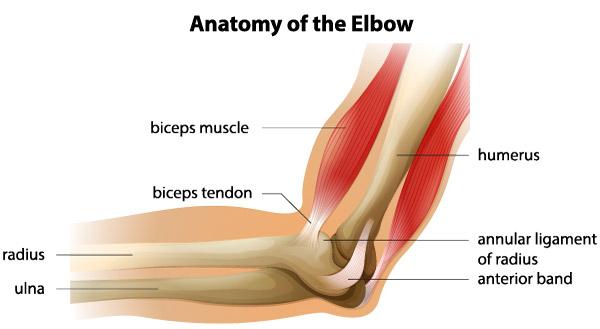 Recuperare după leziunile articulației cotului -