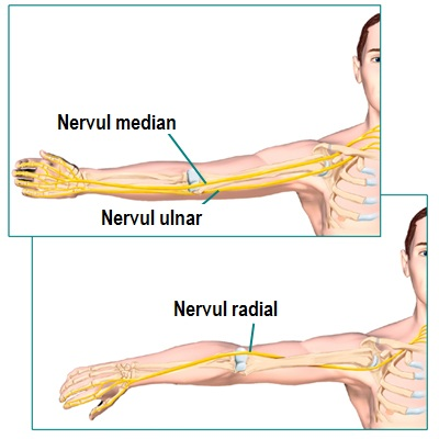 articulația cotului doare și deasupra