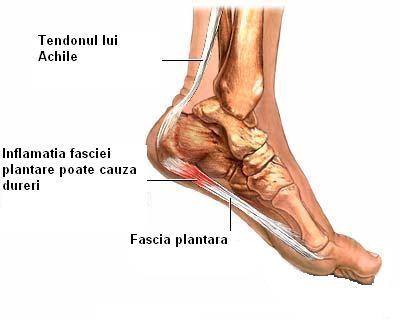 ultimele tratamente pentru artroză dureri de umăr la braț