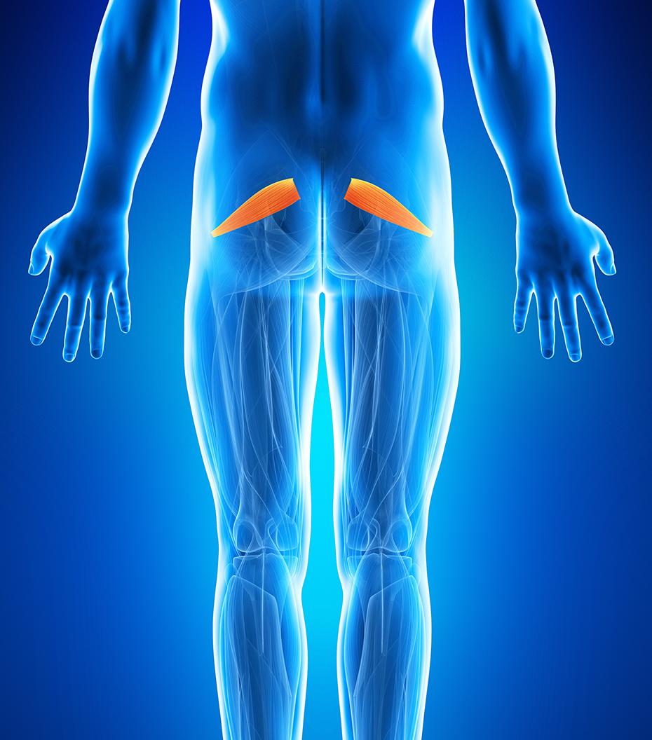 durere articulației coapsei atunci când stai
