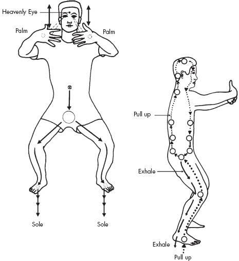 dureri articulare qigong sinovita restaurării articulației genunchiului