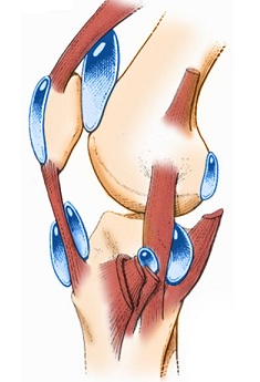 inflamație deasupra genunchiului