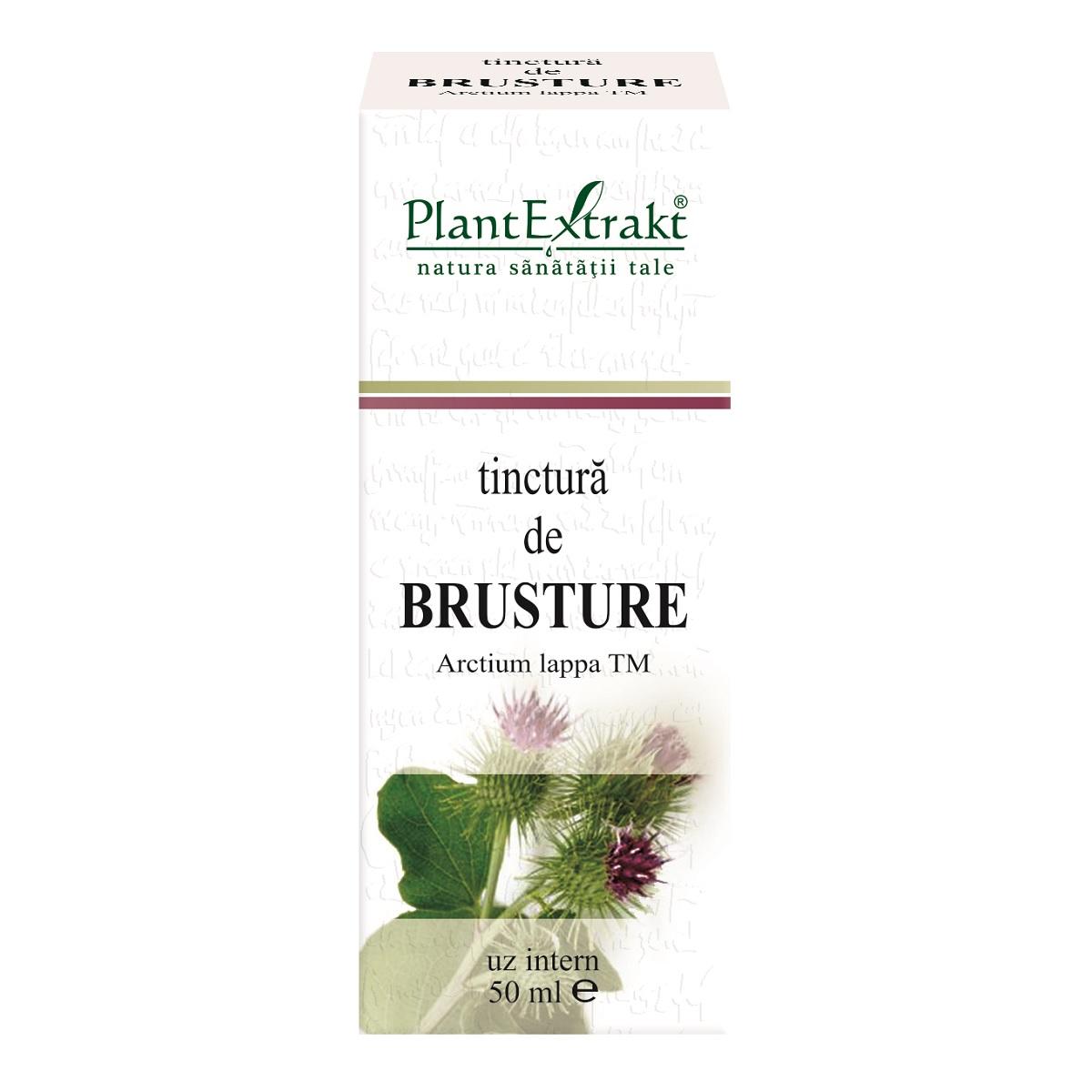 Cerere de semințe de brusture pentru dureri articulare