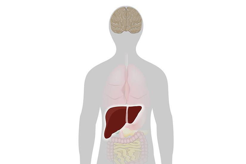 Dureri articulare hepatite cu tratament