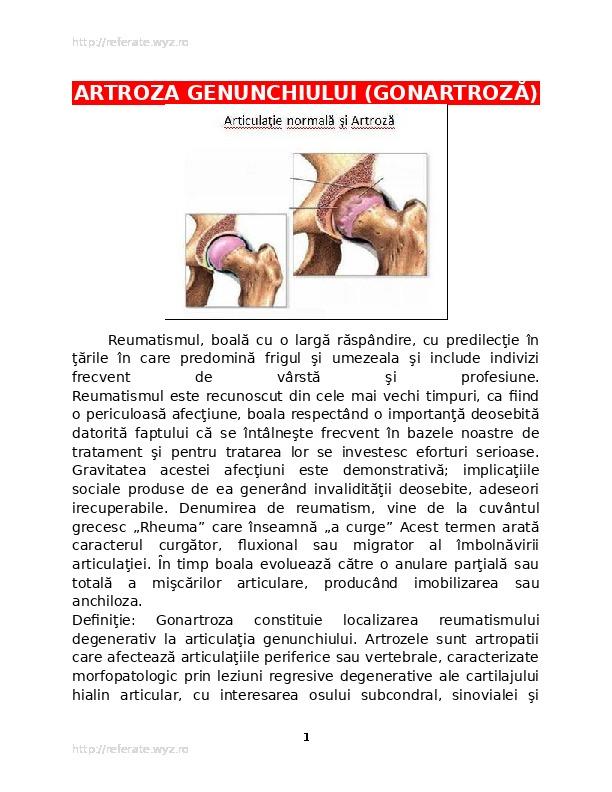 Care este numele bolii când cartilajul este șters în articulație